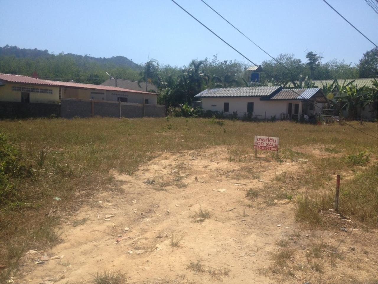 REAL Phuket  Agency's 800 Sqm Flat Land for Sale in Bang Jo 4