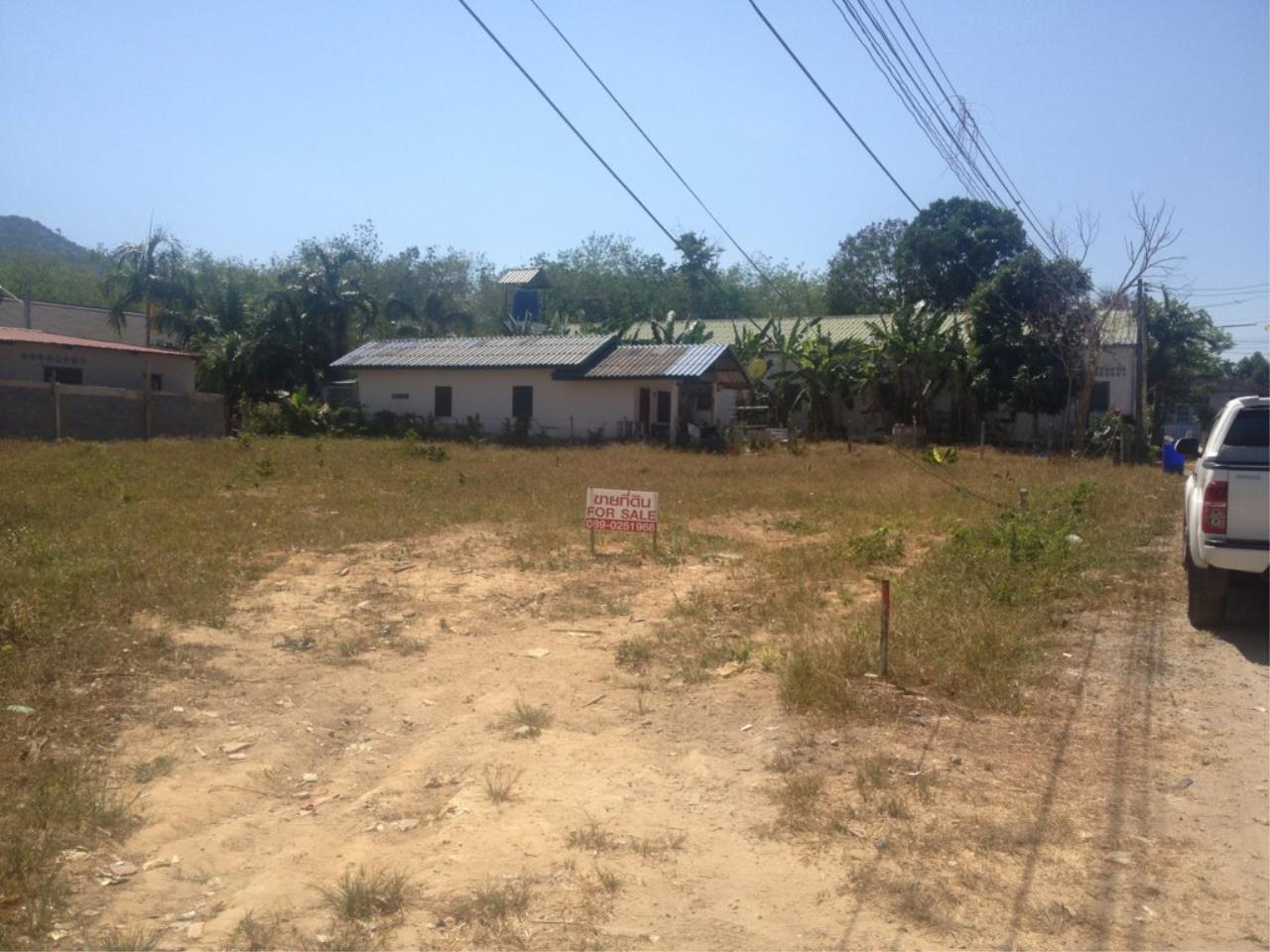 REAL Phuket  Agency's 800 Sqm Flat Land for Sale in Bang Jo 5
