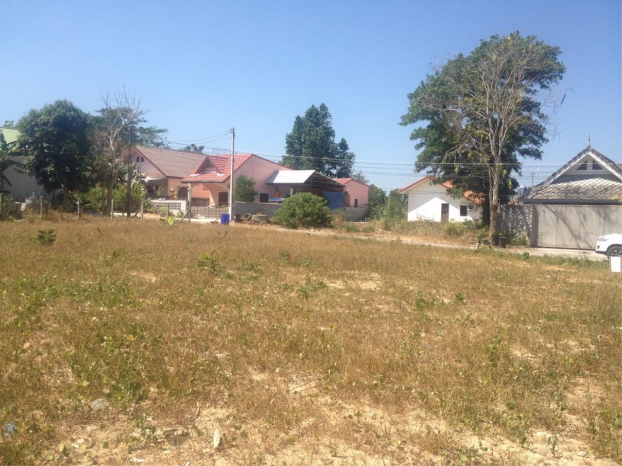 REAL Phuket  Agency's 800 Sqm Flat Land for Sale in Bang Jo 6
