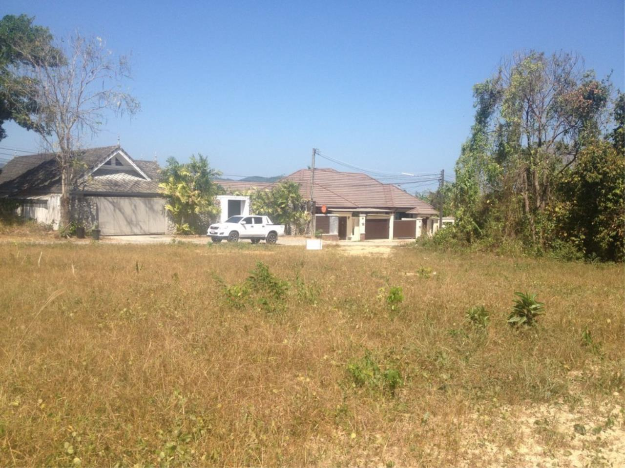 REAL Phuket  Agency's 800 Sqm Flat Land for Sale in Bang Jo 8