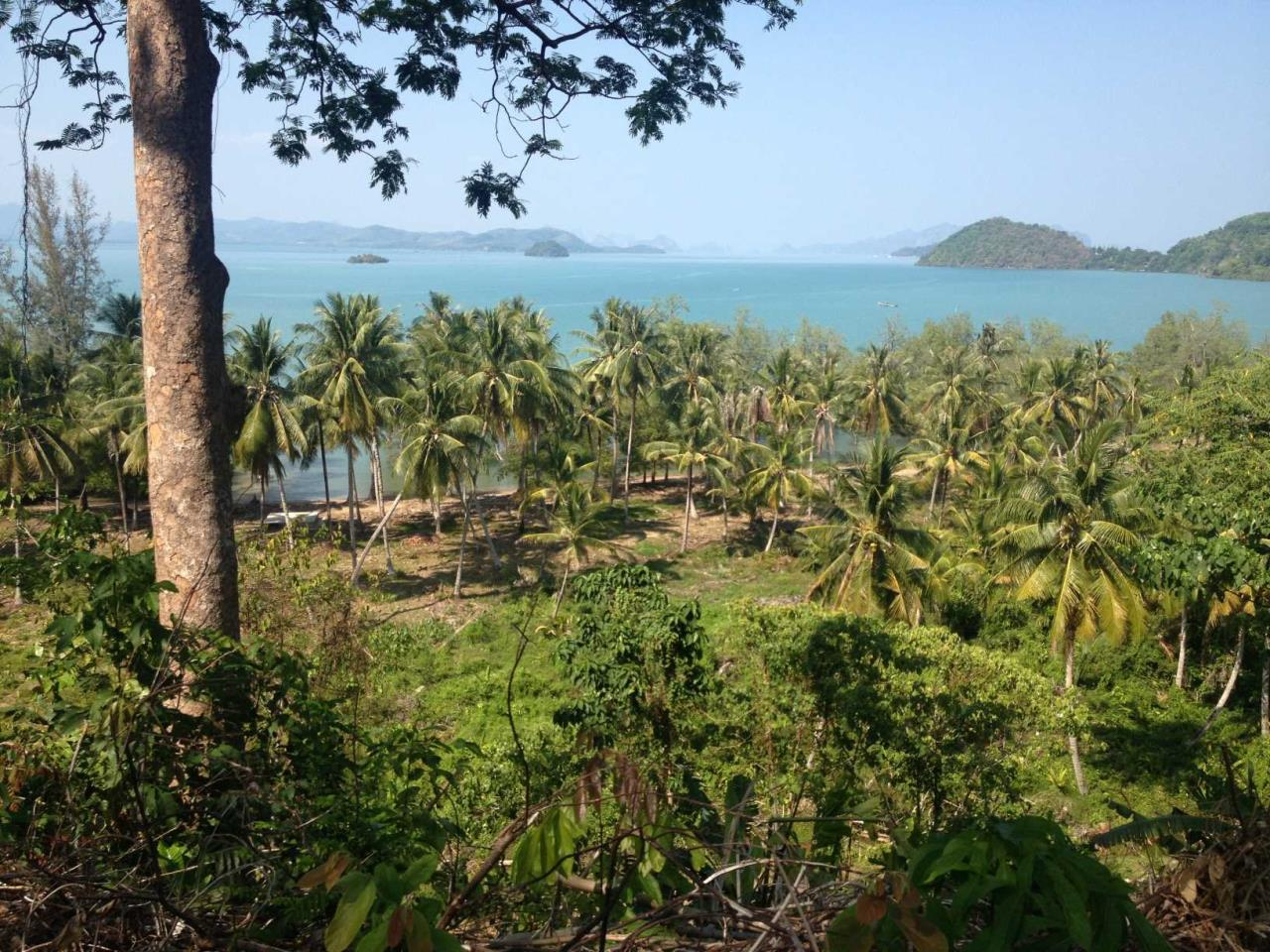 REAL Phuket  Agency's East Coast Oceanfront 175+ Rai with 1350 Meter Ocean Frontage incl. 2 Sea View Villas 21
