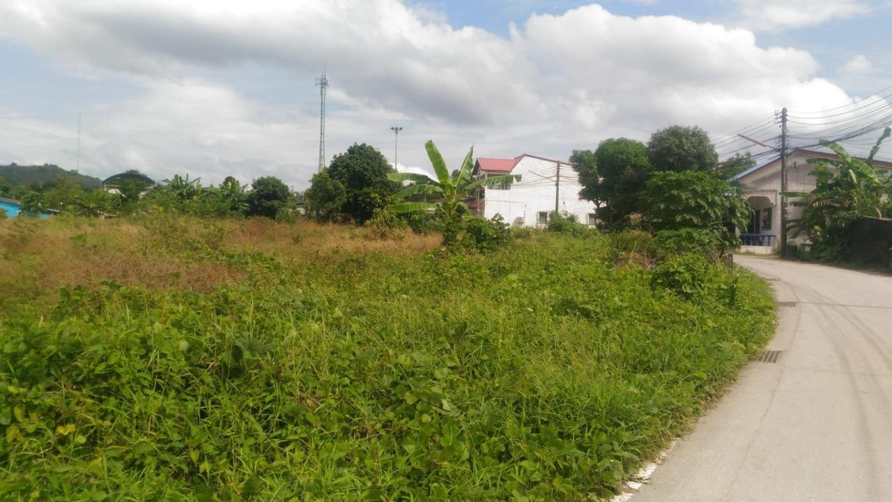 REAL Phuket  Agency's Koktanod - 9.75 Rai Development Land in Layan 1