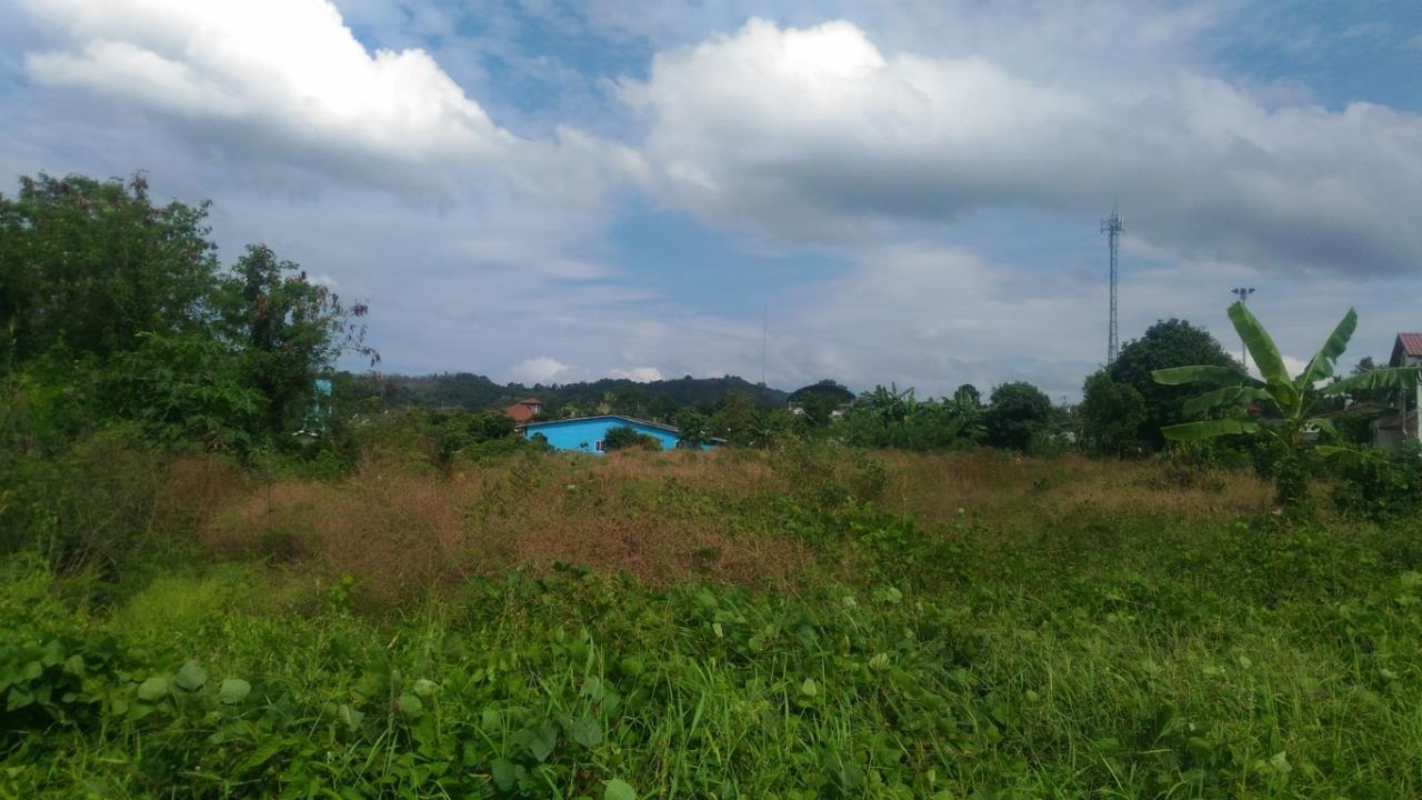 REAL Phuket  Agency's Koktanod - 9.75 Rai Development Land in Layan 4