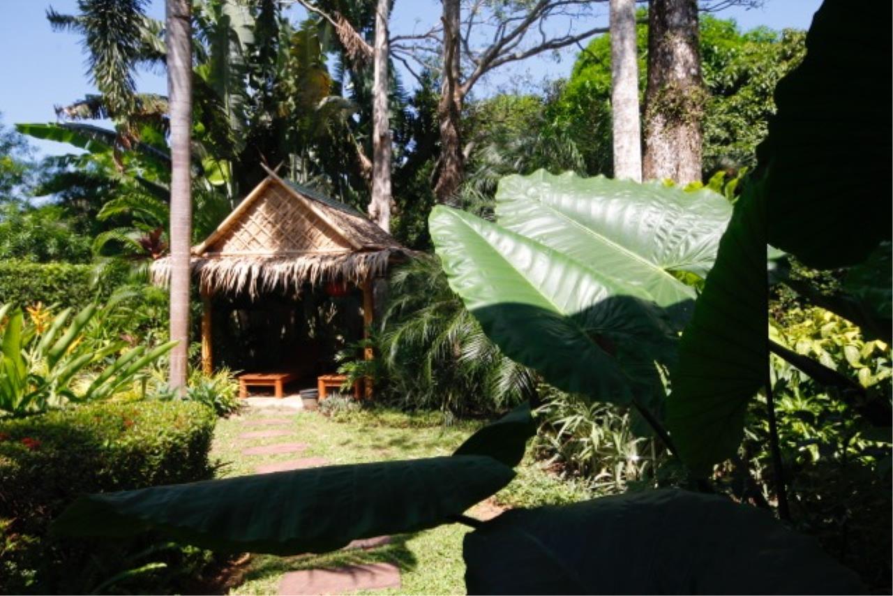REAL Phuket  Agency's The Dream - 3-Bedroom Pool Villa in Rawai 14