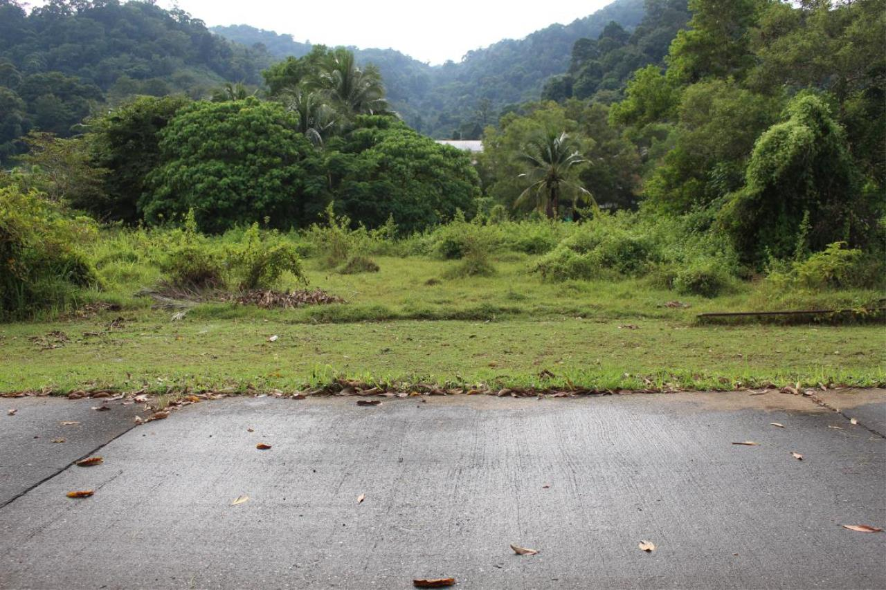 REAL Phuket  Agency's 40+ Rai Development Land in Kathu - below THB 9m/Rai 4