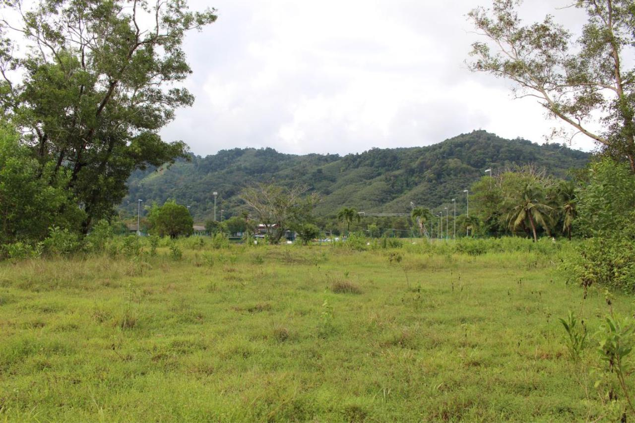 REAL Phuket  Agency's 40+ Rai Development Land in Kathu - below THB 9m/Rai 1