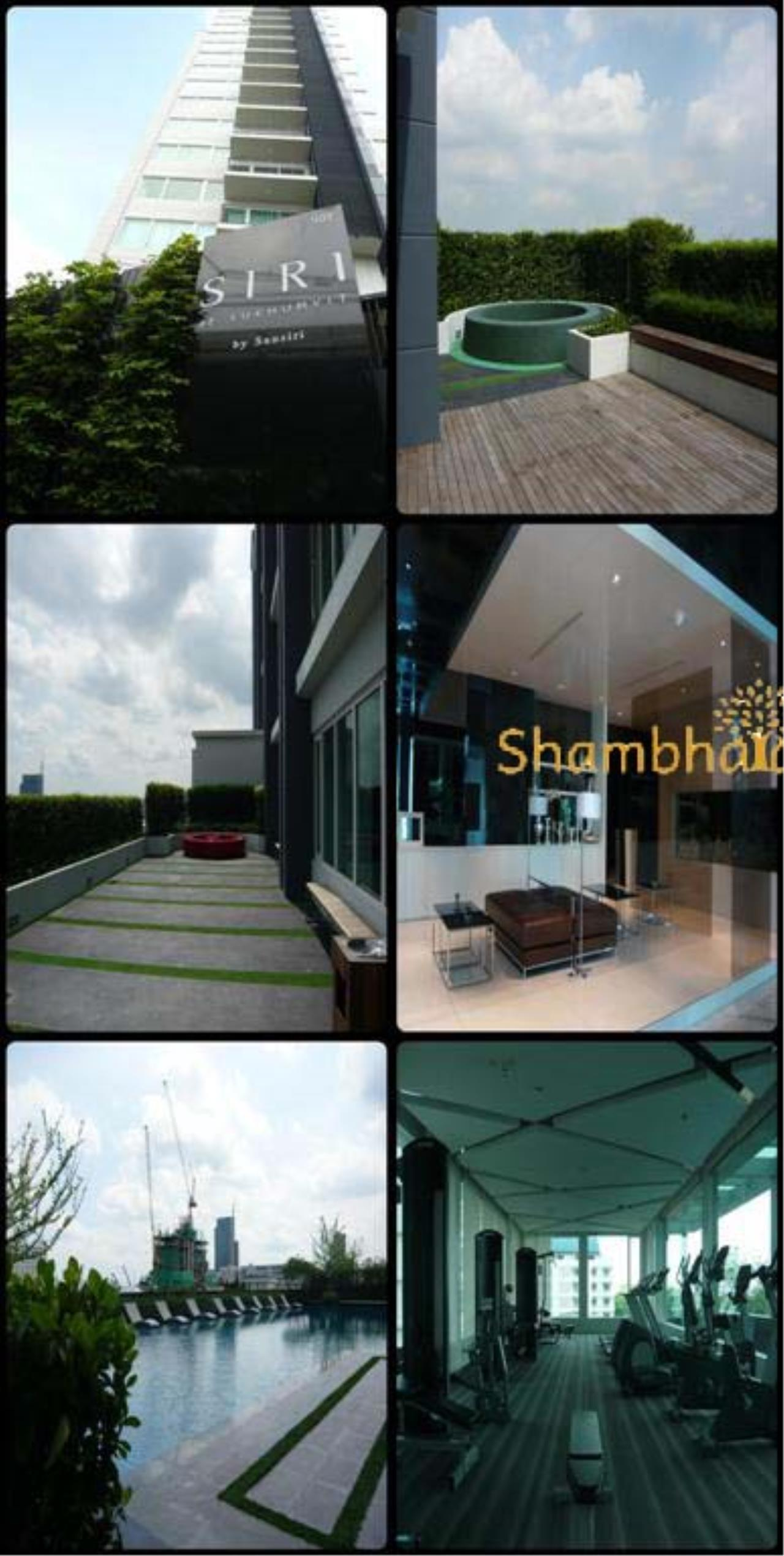 Shambhala Realty Agency's Siri @ Sukhumvit Condominium for Rent in Sukhumvit 38 1