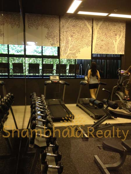 Shambhala Realty Agency's Condo For Rent: Noble Reveal Sukhumvit Soi 63 2
