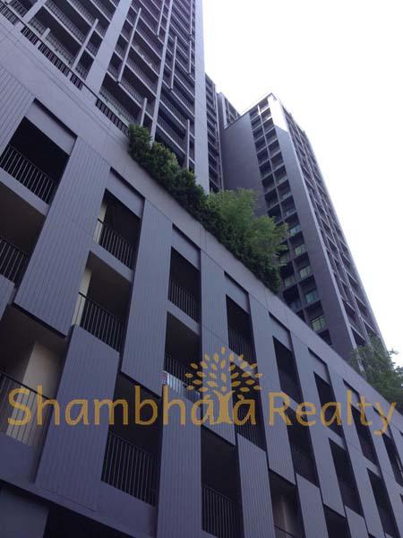 Shambhala Realty Agency's Condo For Rent: Noble Reveal Sukhumvit Soi 63 3