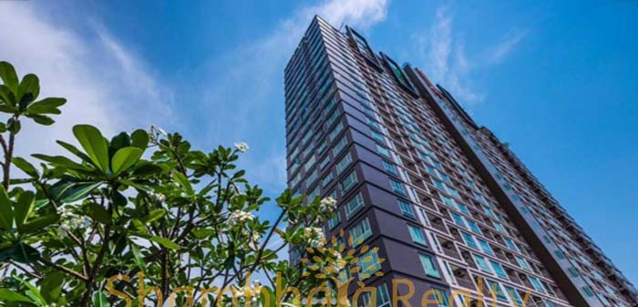Shambhala Realty Agency's Condo for rent Thru Thong Lo 13