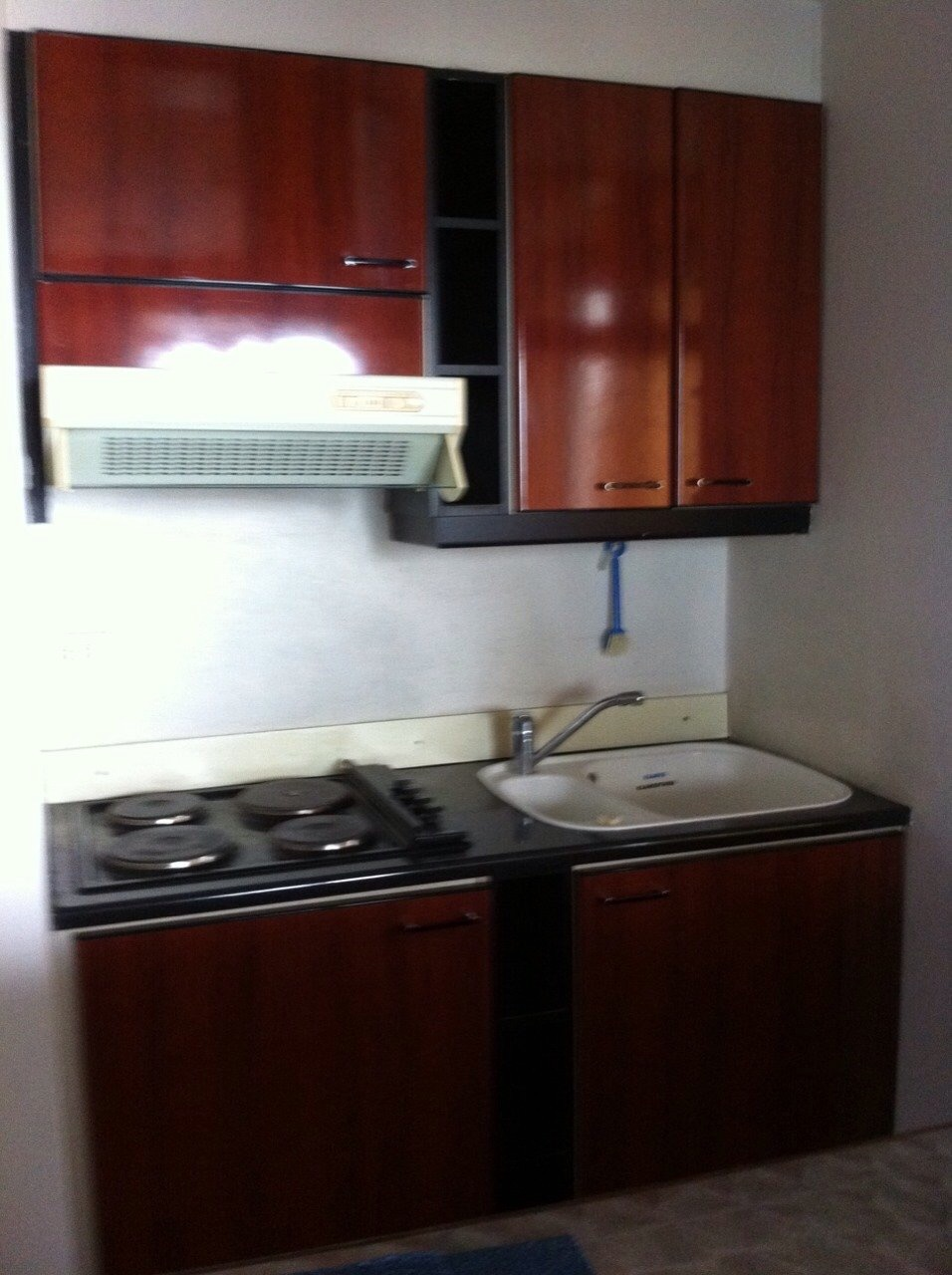Shambhala Realty Agency's Lake Avenue For Rent 3