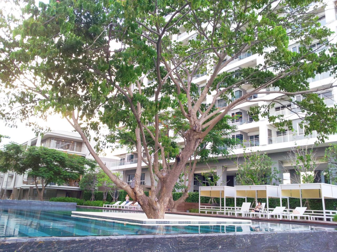 Agent - Sirikarn Katesuwan Agency's Luxury Beachfront Apartment 79 SQM. in Hua Hin for SALE only 6M 1