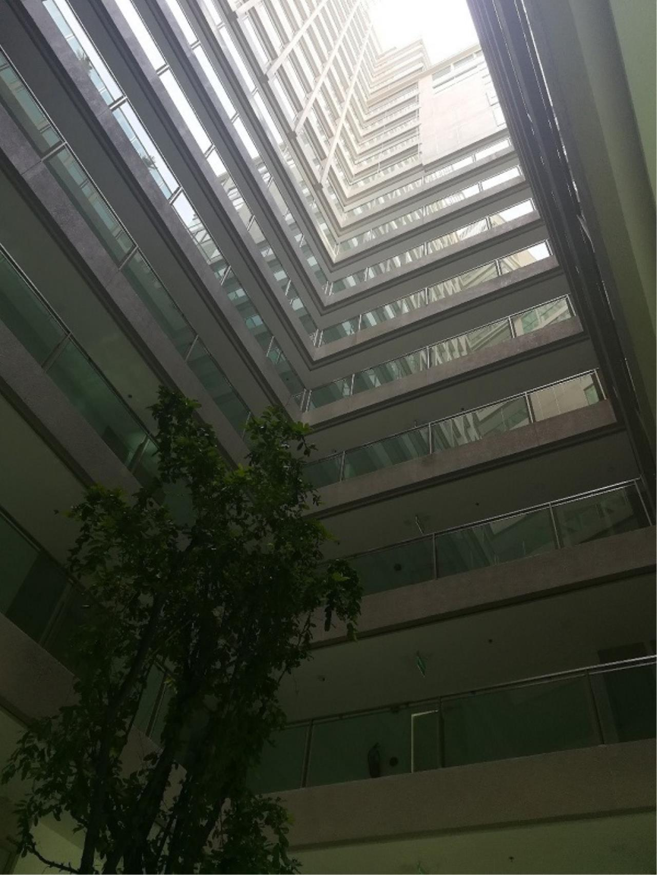 The 12 Real Estate Agency's The Cloud Condominium For Sale 2