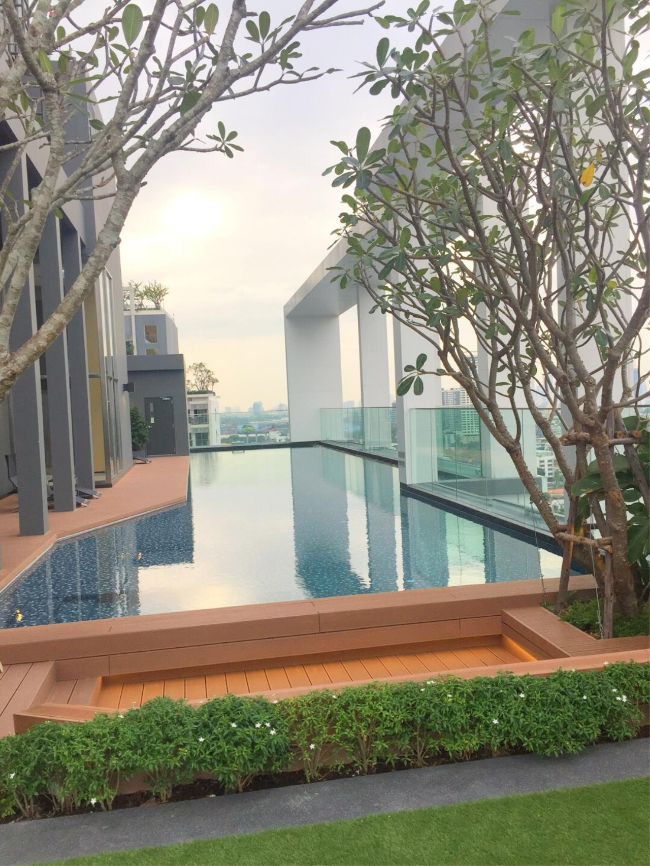 RE/MAX All Star Realty Agency's Life Sukhumvit 48 one-bed for rent  7