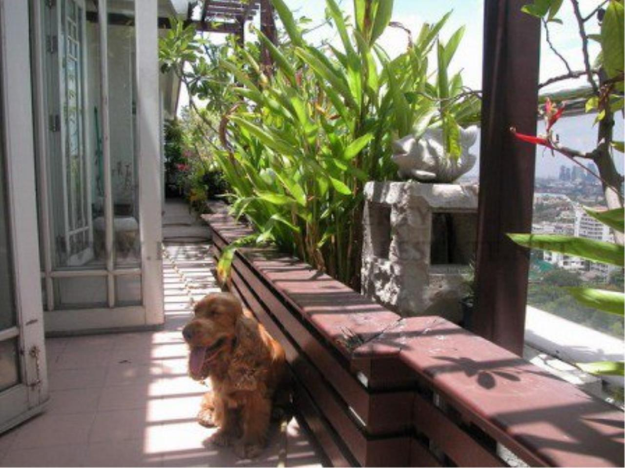 Piri Property Agency's Spacious Duplex Penthouse Condo in Sathorn with more than 400 SQM 4