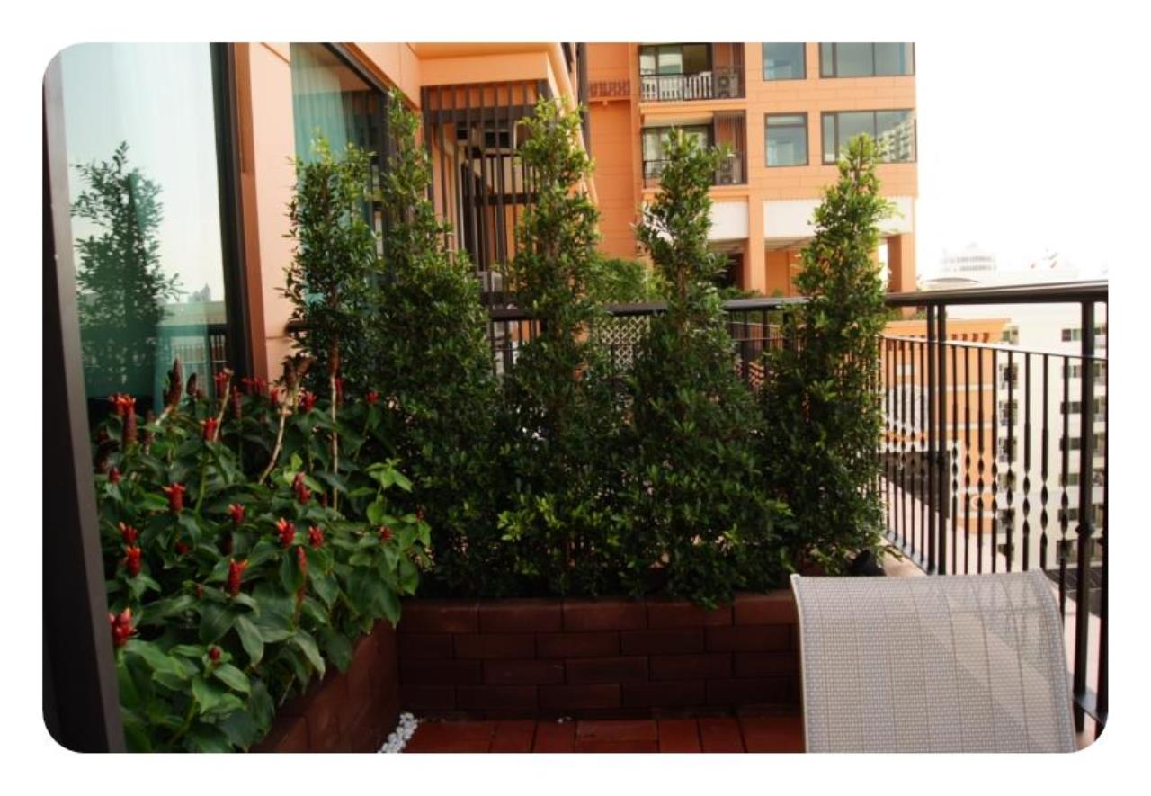 Piri Property Agency's one bedroom Condo For Rent Aguston 5