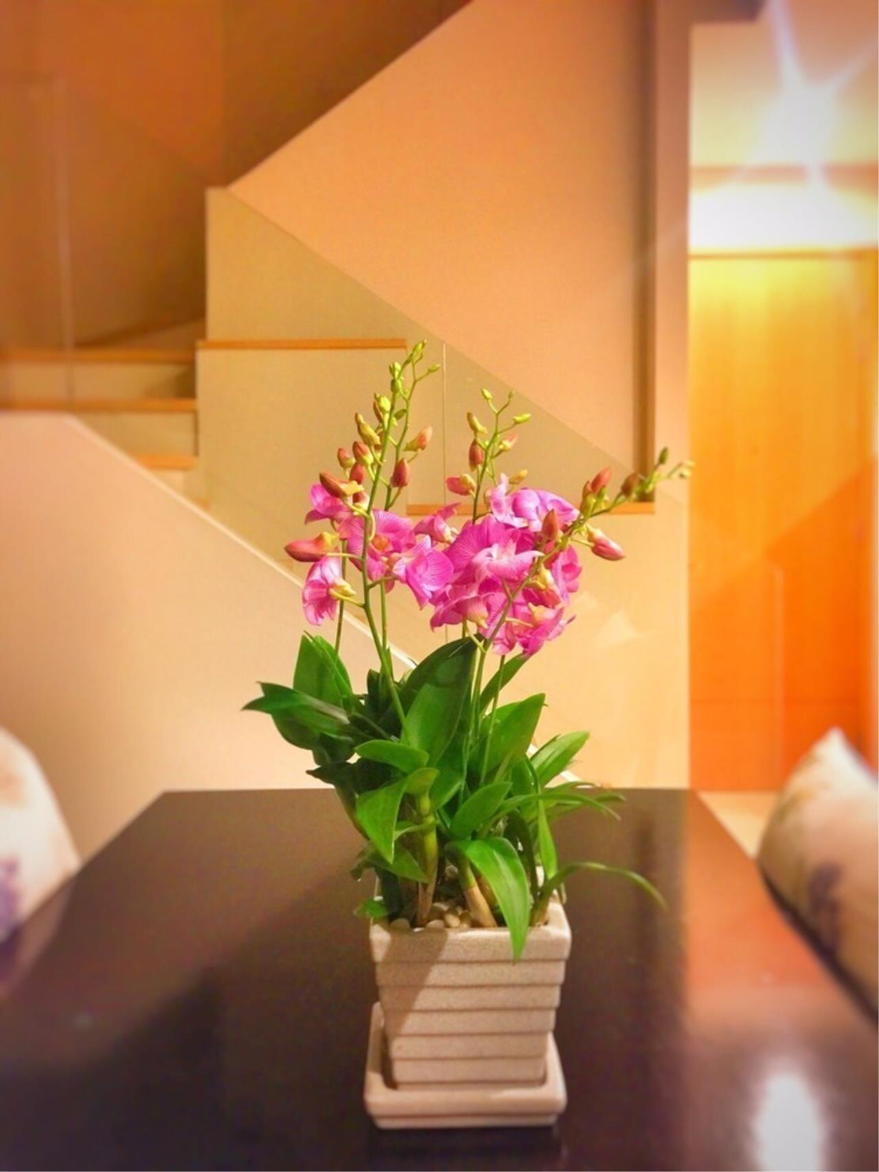 The One Residence Agency's condominium for sale , rent at Villa Asoke , 2BR , 2BA , 90SQM 1