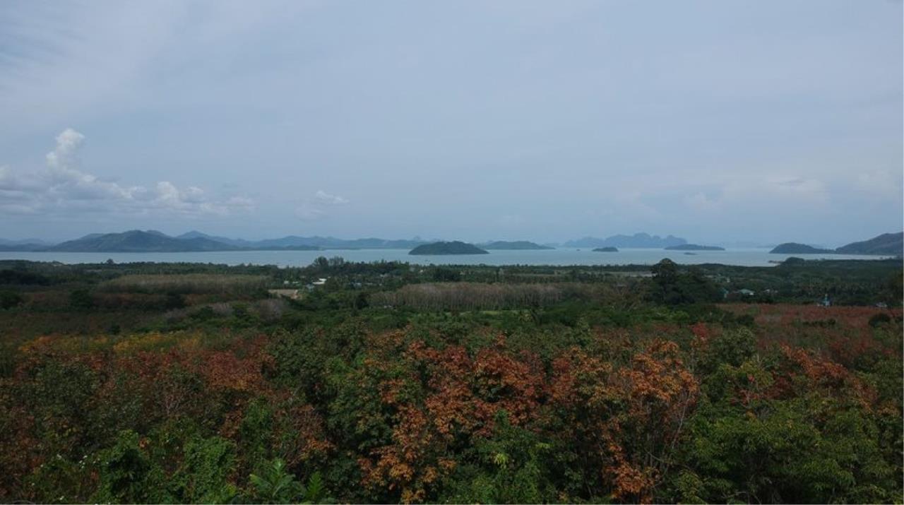 Made All Estate Agency's Hilltop Land for Sale in Paklok Phuket, 1 Rai, Stunning Seaview 1