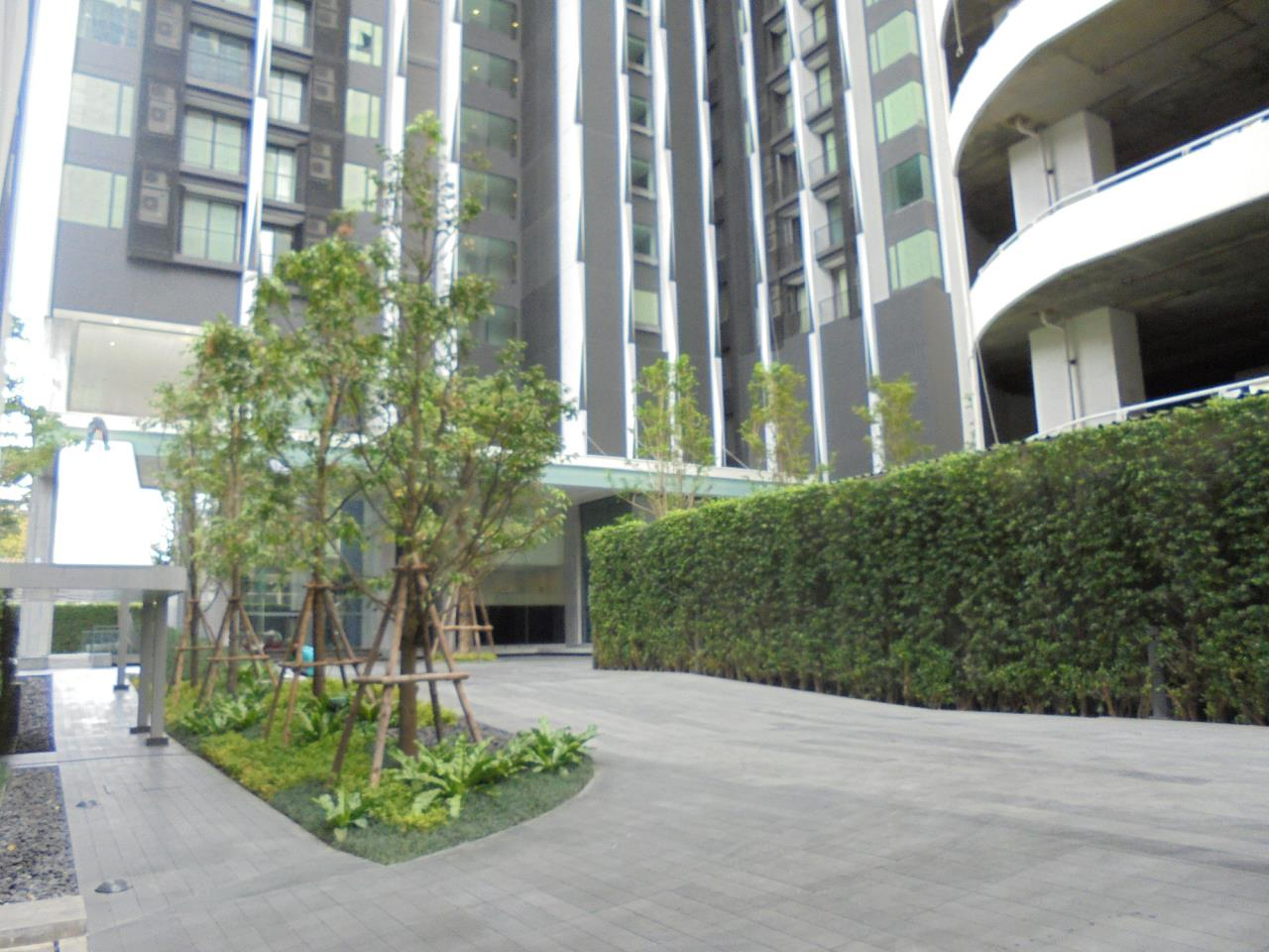 RE/MAX CondoDee Agency's New Condo for Rent @ BTS Asoke 9